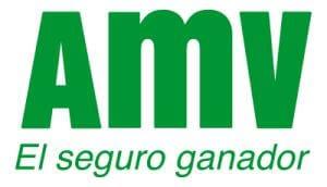 Amv Assurance Numero